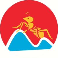 无锡金蚂蚁物流有限公司